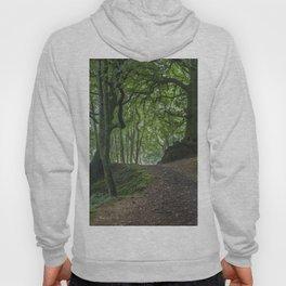 Into Blackbrough Woods Hoody