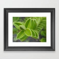 Plant! Framed Art Print