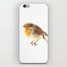 bird 2 iPhone & iPod Skin
