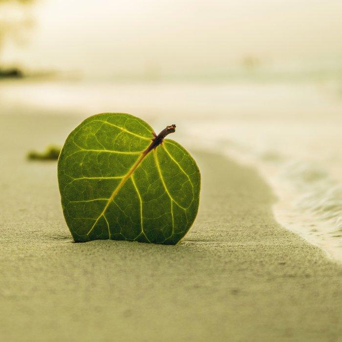 Beach_2015_0202 Duvet Cover