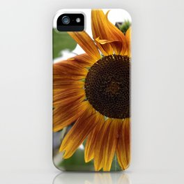 Muncie in the Summer iPhone Case