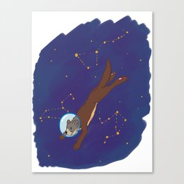 Take me to Otter Space Canvas Print
