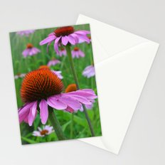 Pink Coneflowers Stationery Cards
