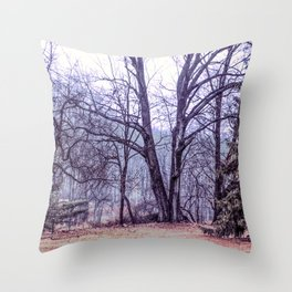 Landscape at Old Kennett Meetinghouse Throw Pillow