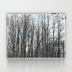 On a Cold Day Laptop & iPad Skin