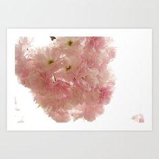 Baby Pink Art Print
