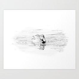 Duck Sketch Art Print