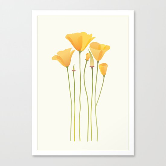 Sunkissed Poppies I Canvas Print