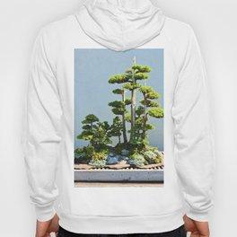 Forest Island Hoody