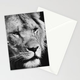 African Lion Black and White Photographic Print Stationery Cards