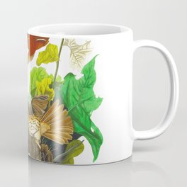 Ferruginous Thrush John James Audubon Vintage Birds Of America Illustration Coffee Mug