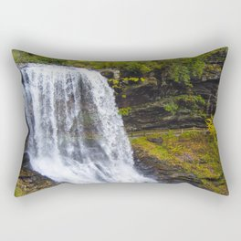 Dry Falls #2 Rectangular Pillow