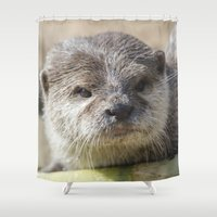 otter Shower Curtains featuring Otter by PICSL8