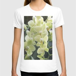 Longwood Gardens Orchid Extravaganza 69 T-shirt