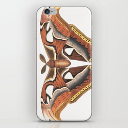 Atlas Moth iPhone Skin