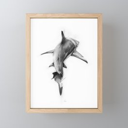 Shark II Framed Mini Art Print