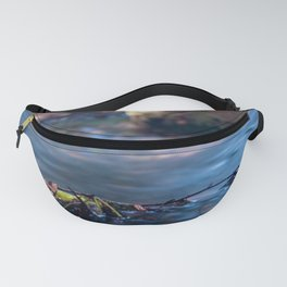The brook Fanny Pack