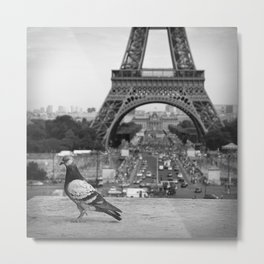 Paris. Colombe a la Tour Eiffel. Metal Print