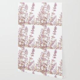 Soft Pink Wild Summer Flowers Wallpaper