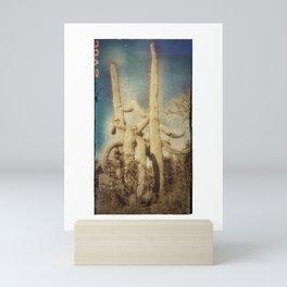 Saguaros #44 Mini Art Print