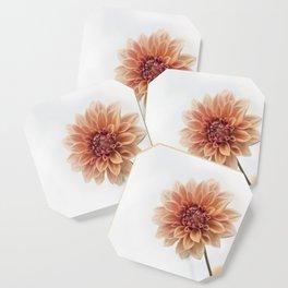 Dahlia Flower Coaster