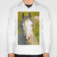 pony Hoodies featuring Welsh Pony  by Doug McRae