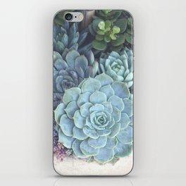 Succulent Container iPhone Skin