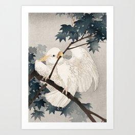 Cockatoo on a tree - Japanese vintage woodblock print Art Print