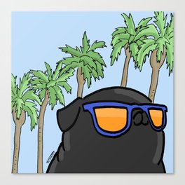 Black pug in California Canvas Print