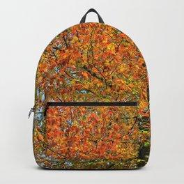 Burst of Colour Backpack