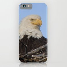 Eagle's Nest iPhone 6s Slim Case