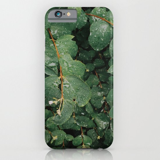Spring Dew Drops iPhone & iPod Case