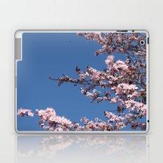 Sakura Blossoms Laptop & iPad Skin