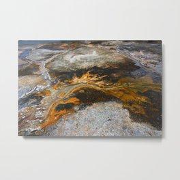 Earth's Artwork Metal Print