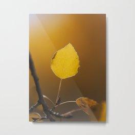Golden Aspen Metal Print