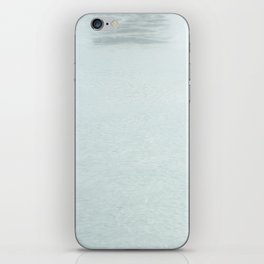Lost Swan iPhone Skin