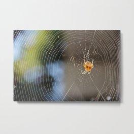Spider's web Metal Print