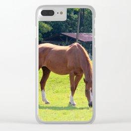 Rustic Scene Clear iPhone Case