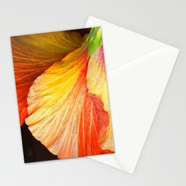 Exotic Fine Art Macro Flower in Chic Red Stationery Cards
