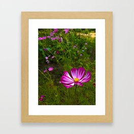 Fuchsia Feelings Framed Art Print