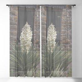 Yucca and ruins Sheer Curtain