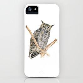 Tucu the Lesser Horned Owl iPhone Case