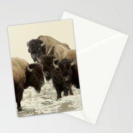 American Buffalo Stationery Cards