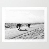 Cold Creek Horses Art Print