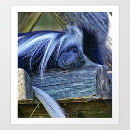 Beautiful dreamer Art Print