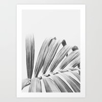 palm Art Prints featuring PALM by Lucie Birant