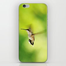 Hummingbird at the Flowers iPhone & iPod Skin