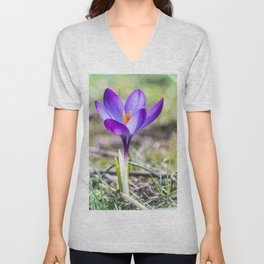Single purple saffron Crocus flower close up Unisex V-Neck