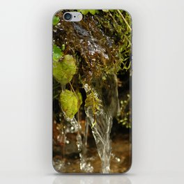 fairy waterfall iPhone Skin