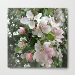 Simple Blossoms Metal Print